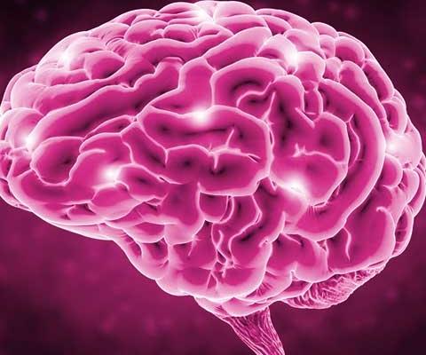 Ejercicio memoria a largo plazo episodica